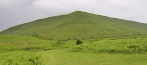 Hergest Ridge